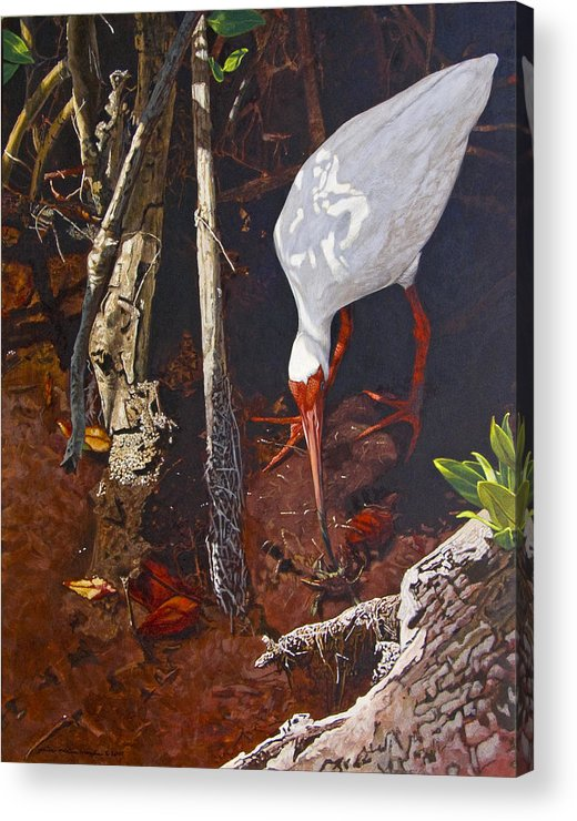 Waterfowl Acrylic Print featuring the painting Sparring For Lunch by Peter Muzyka