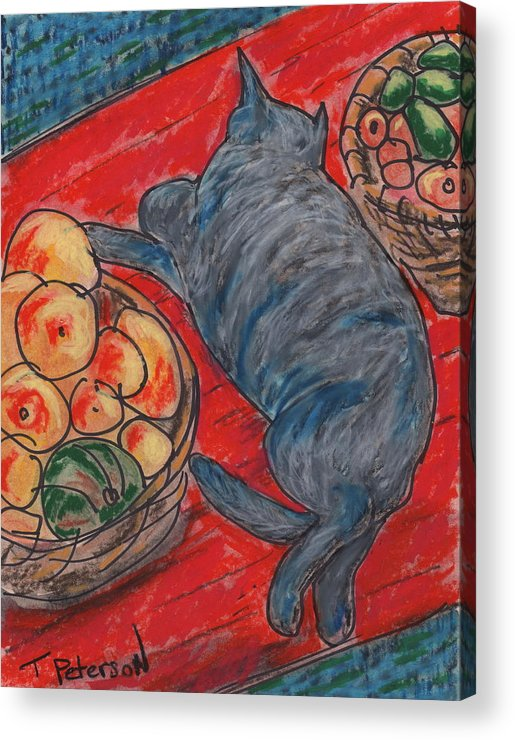 Cat Acrylic Print featuring the painting Cat Nap by Todd Peterson
