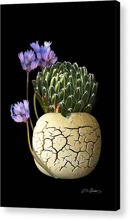 Photography Acrylic Print featuring the photograph Still Life by Richard Gordon