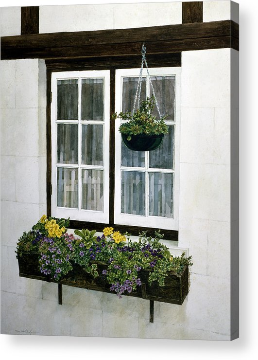 Still Life Acrylic Print featuring the painting Window Box by Tom Wooldridge