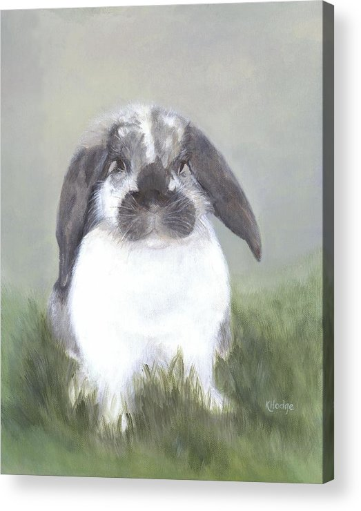 Bunny Acrylic Print featuring the painting Abby by Kimberly Hodge