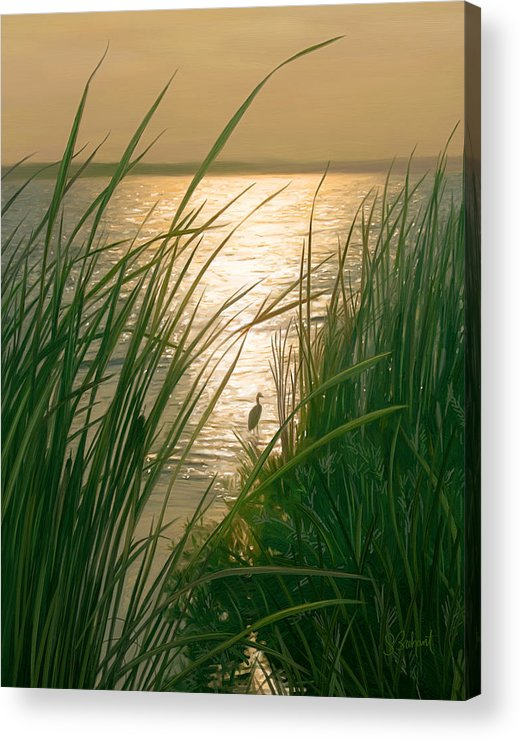 Cape Cod Acrylic Print featuring the digital art Marsh Sunset by Sue Brehant