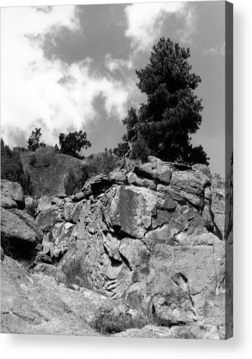Landscape Acrylic Print featuring the photograph Pinnacle Pine by Allan McConnell