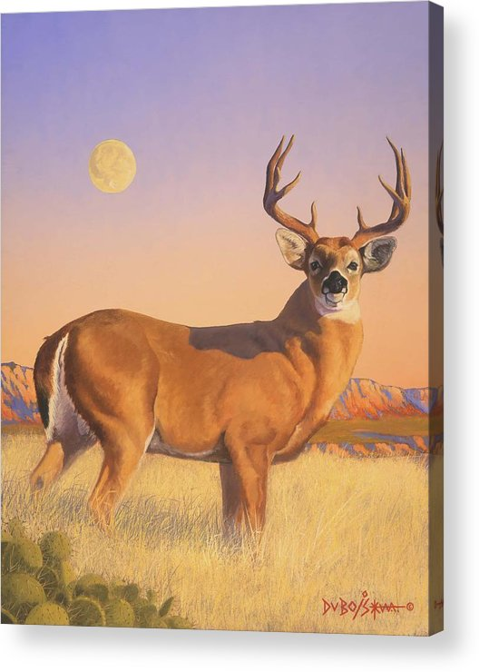 Deer Acrylic Print featuring the painting The Stag by Howard Dubois
