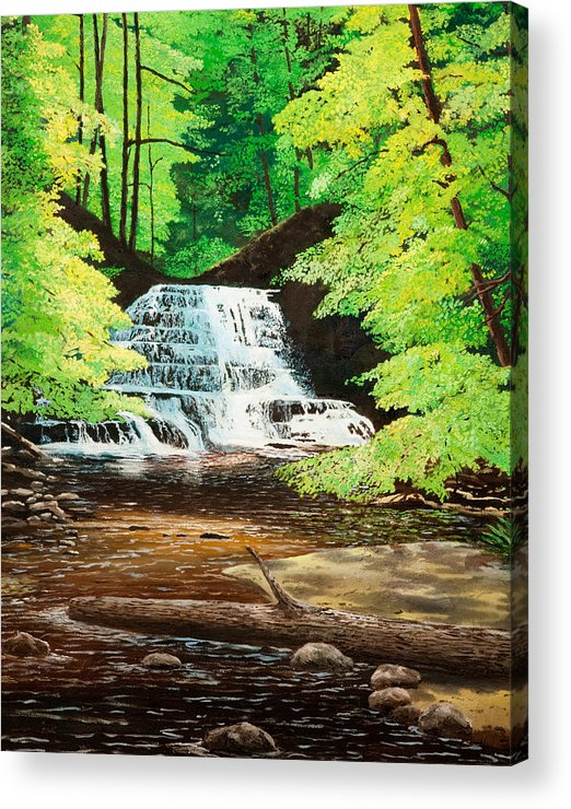 Water Acrylic Print featuring the painting Upper Falls At Salt Springs by Mark Regni