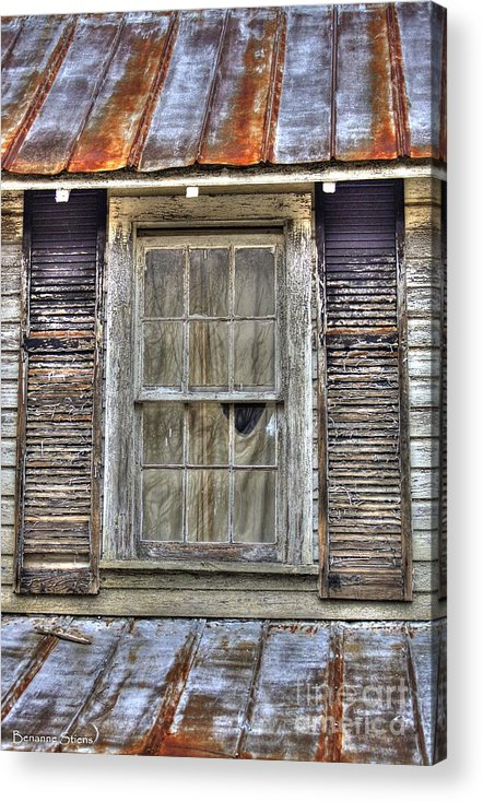 Rusted Tin Roof Acrylic Print featuring the photograph I'm Watching You by Benanne Stiens