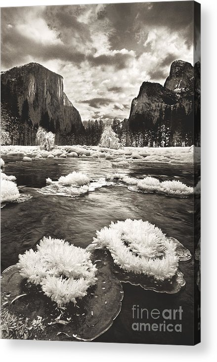 North America Acrylic Print featuring the photograph Rime Ice On The Merced In Black And White by Dave Welling