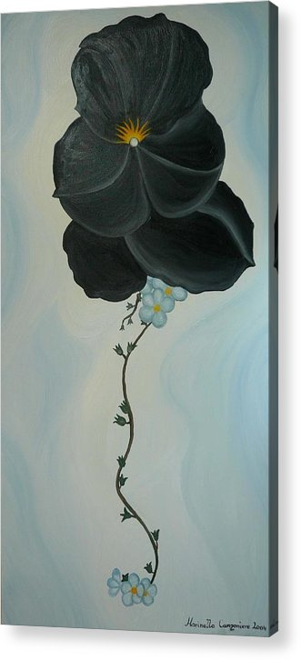 Marinella Owens Acrylic Print featuring the painting Black Pansi by Marinella Owens