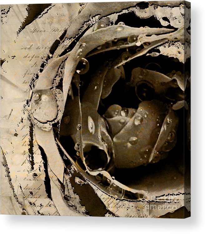 Acrylic Print featuring the mixed media Life V by Yanni Theodorou