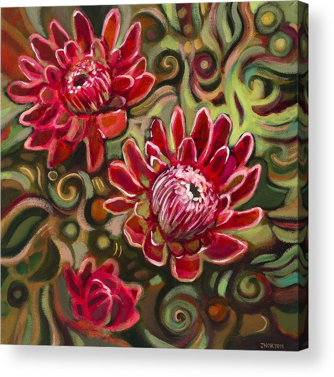 Jen Norton Acrylic Print featuring the painting Red Proteas by Jen Norton