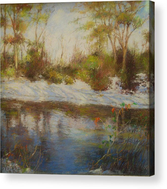 Landscapes Acrylic Print featuring the pastel Southern Landscapes  by Nancy Stutes