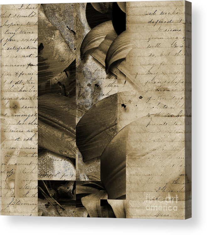 Acrylic Print featuring the mixed media Written IIi by Yanni Theodorou
