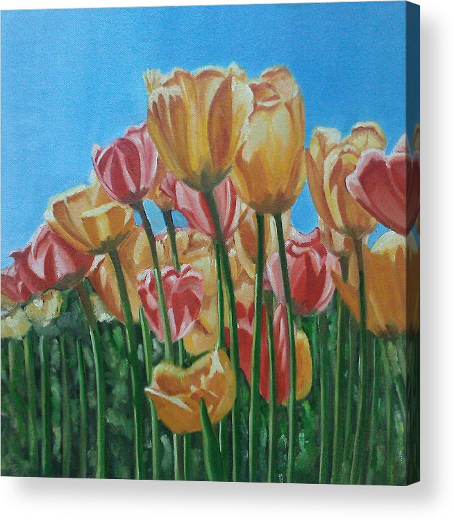 Floral Acrylic Print featuring the painting Blooming Tulips by Yasha Sharma