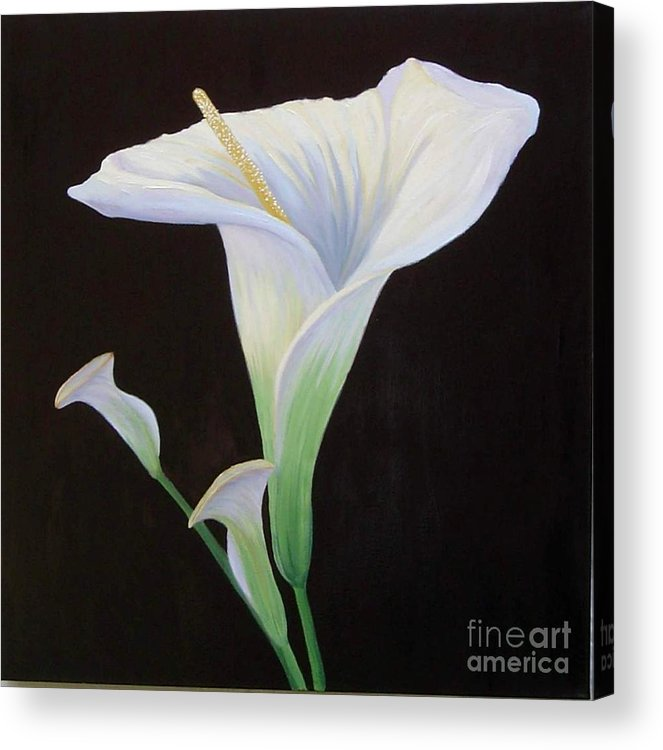 Flower Portrait Acrylic Print featuring the painting Calla Lily X by Mary Erbert