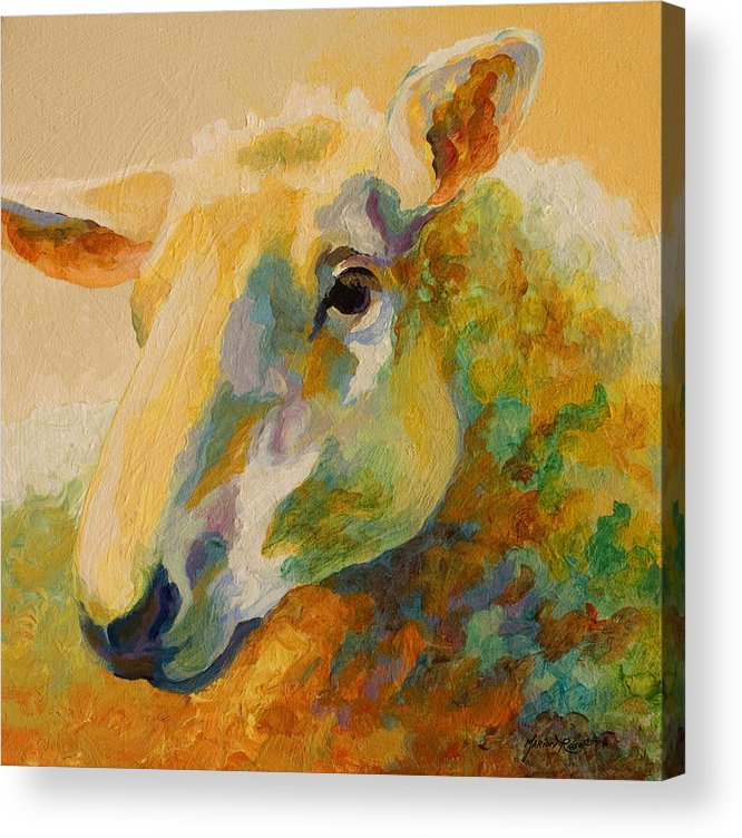 Llama Acrylic Print featuring the painting Ewe Portrait IIi by Marion Rose