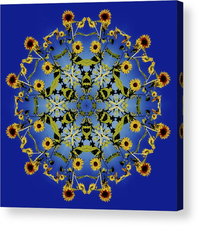 Mandala Acrylic Print featuring the digital art Mandala Sunflower by Nancy Griswold