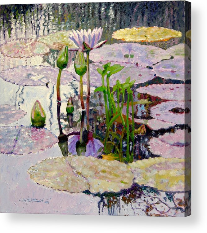 Water Lily Pond Acrylic Print featuring the painting Pastel Light by John Lautermilch