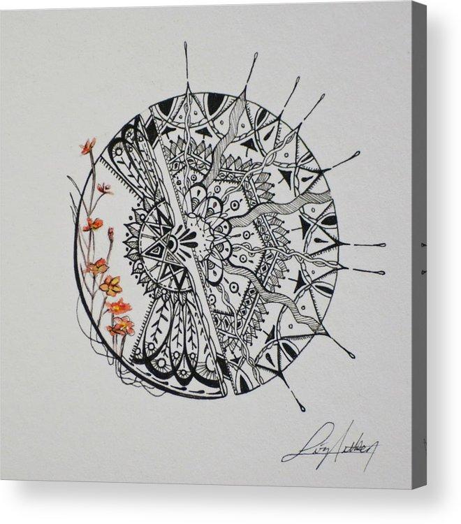 Orange Acrylic Print featuring the drawing Saxifraga 'peter Pan' by Aitken Inks