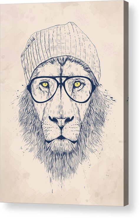 Lion Acrylic Print featuring the digital art Cool lion by Balazs Solti