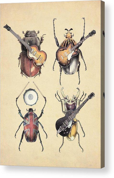 Beatles Acrylic Print featuring the digital art Meet the Beetles by Eric Fan
