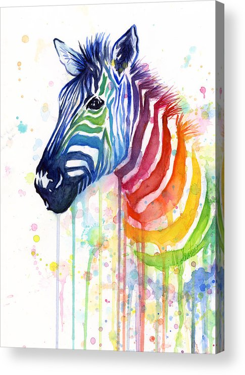 Rainbow Acrylic Print featuring the painting Rainbow Zebra - Ode to Fruit Stripes by Olga Shvartsur