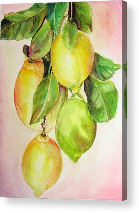 Still Life Acrylic Print featuring the painting Citrons by Muriel Dolemieux