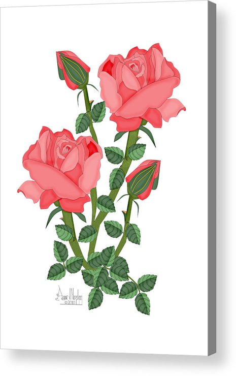 Pink Roses Acrylic Print featuring the painting Daiquiri Roses in January 2010 by Anne Norskog