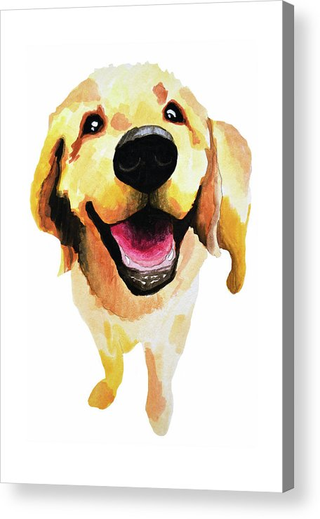 Dog Acrylic Print featuring the painting Good Boy by Amy Giacomelli