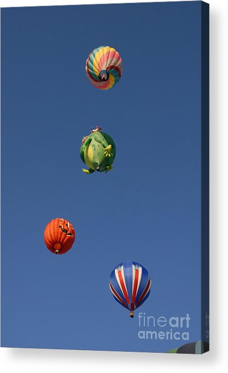 Hot Air Balloon Acrylic Print featuring the photograph Hot Air Rally by Dennis Hammer