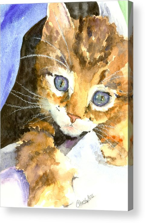 Cat Acrylic Print featuring the painting Kitten In Blue by Christy Freeman Stark