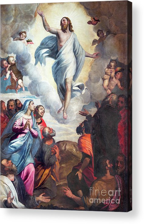 Multiple sizes and options available. Photo Print of /'Ascension/'
