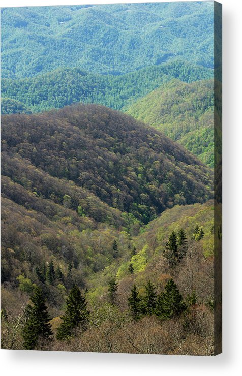 Scenics Acrylic Print featuring the photograph Early Spring, North Carolina by Jerry Whaley