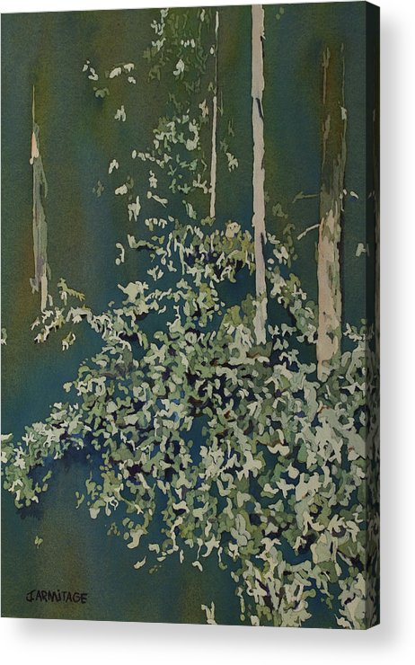 Forest Acrylic Print featuring the painting Lacy Edge by Jenny Armitage