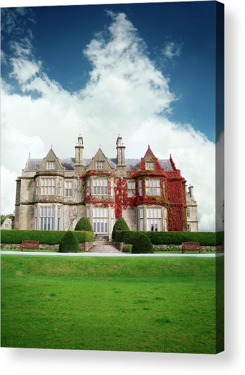 Grass Acrylic Print featuring the photograph Muckross House by Narvikk