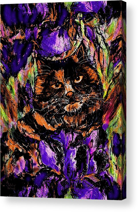 Cat Acrylic Print featuring the painting Iris by Natalie Holland