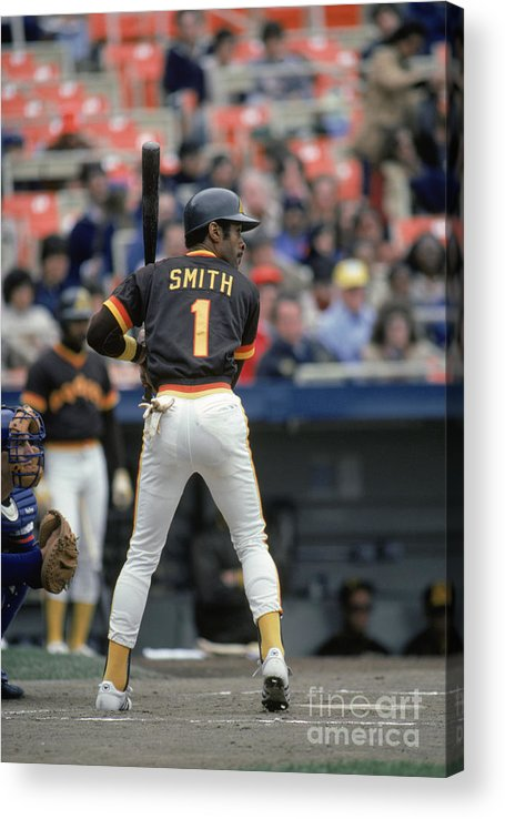 1980-1989 Acrylic Print featuring the photograph Ozzie Smith by Mlb Photos