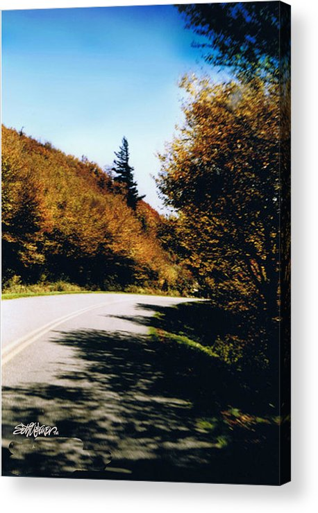 High In The Great Smoky Mtn. As You Round A Curve Stands This Noble Spruce. Acrylic Print featuring the photograph Single Spruce by Seth Weaver