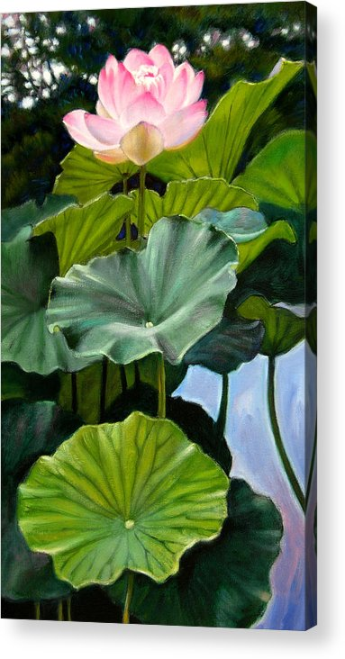 Lotus Flower Acrylic Print featuring the painting Lotus Rising by John Lautermilch