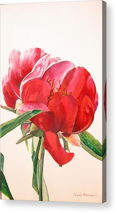 Floral Painting Acrylic Print featuring the painting Pivoine 2 by Muriel Dolemieux