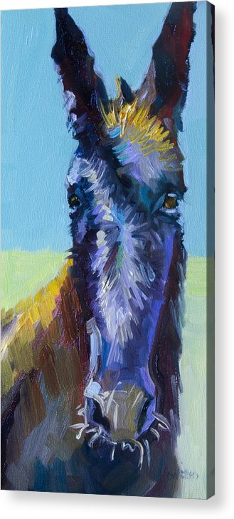 Burro Acrylic Print featuring the painting Burro Stare by Diane Whitehead