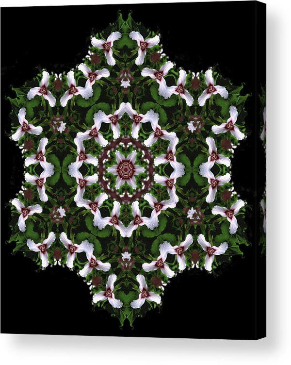 Mandala Acrylic Print featuring the digital art Mandala Trillium Holiday by Nancy Griswold