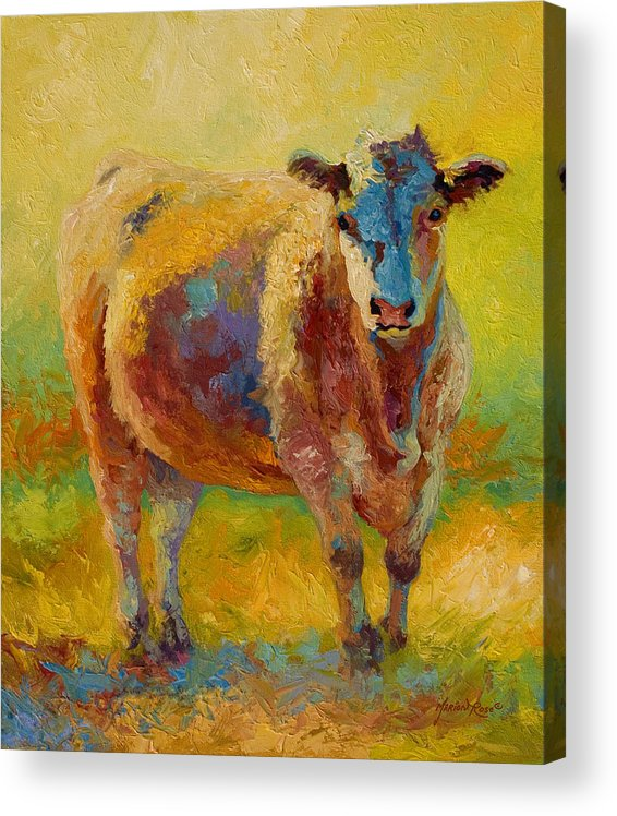 Western Acrylic Print featuring the painting Blondie - Cow by Marion Rose