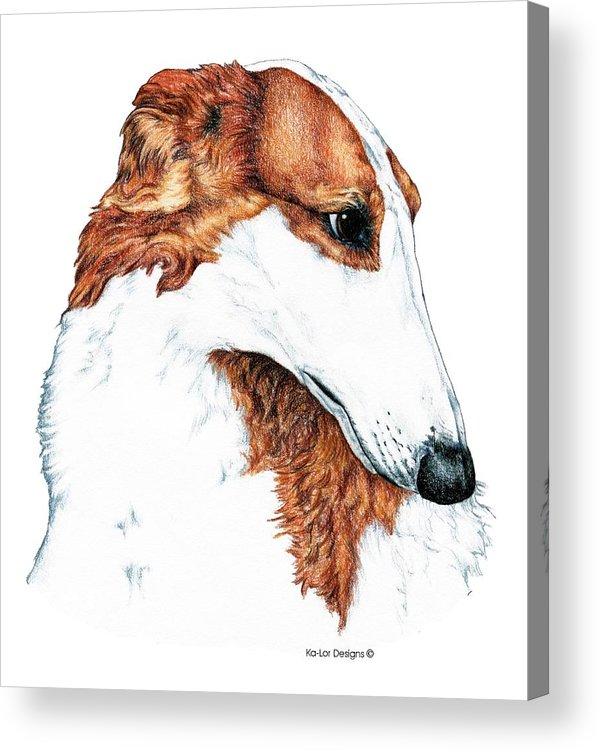 Borzoi Acrylic Print featuring the drawing Borzoi by Kathleen Sepulveda