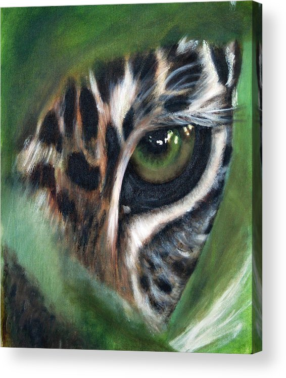 Animals Acrylic Print featuring the painting Watching you watching me by Fiona Jack