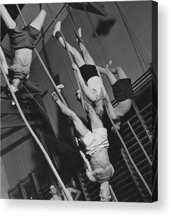 Hanging Acrylic Print featuring the photograph Upside Down Exercises by Fox Photos