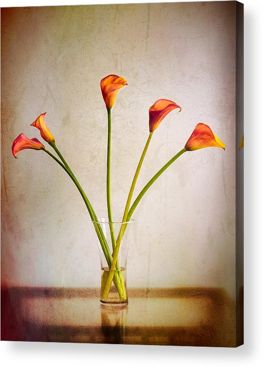 Calla Lilies Acrylic Print featuring the photograph Calla Lilies by Chuck Underwood