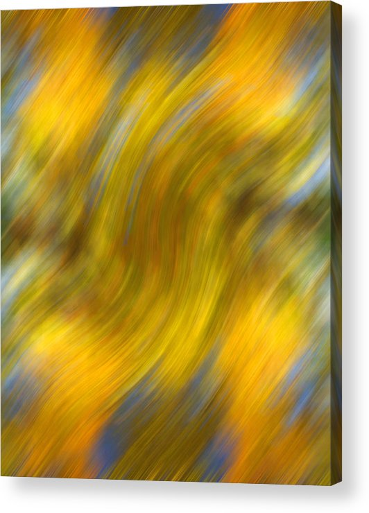 Leaves Acrylic Print featuring the photograph Fall Colors Abstract by Bob Coates