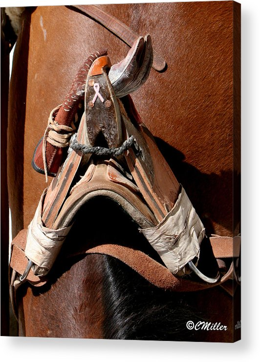 Rodeo Acrylic Print featuring the photograph Showing Support For Pink.. by Carol Miller