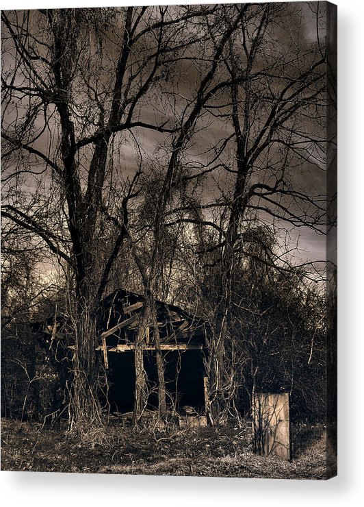 Stark Acrylic Print featuring the photograph Somber Mournings by Steve Parrott