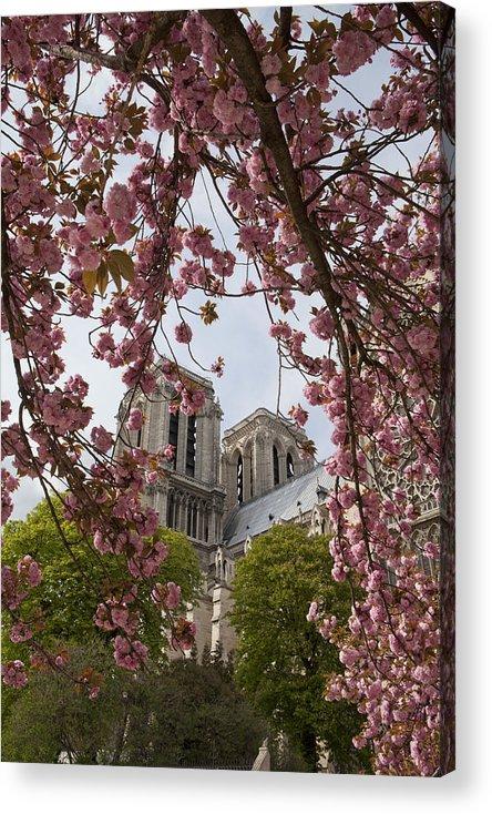 Paris Acrylic Print featuring the photograph Notre Dame 1 by Art Ferrier